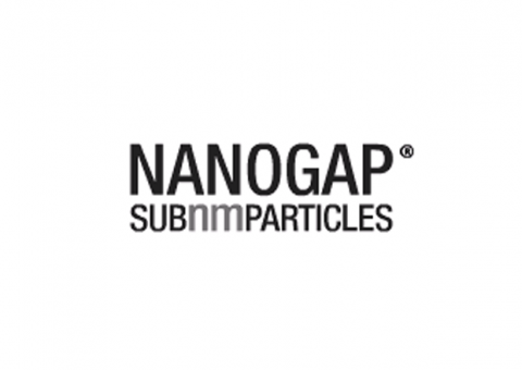 Nanogap